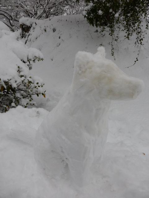シオン雪だるま